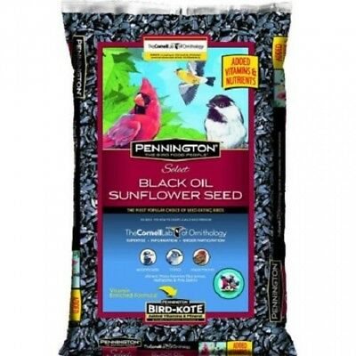 Sunflower Seeds For Birds Bulk Black Oil 40 Lbs