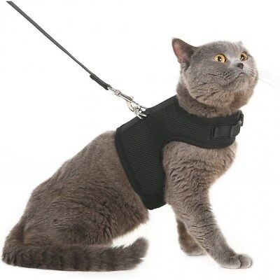 Adjustable Cat Harness And Leash Escape Proof Vest Kitten Puppy