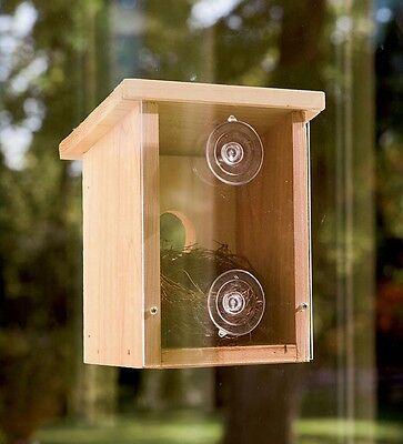 New Window Mount Bird Nest Nesting View Box Wood Finch Wren Birdhouse