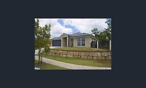 19 Tweeddale Circuit Drewvale Qld 4116             House for sale Drewvale Brisbane South West Preview