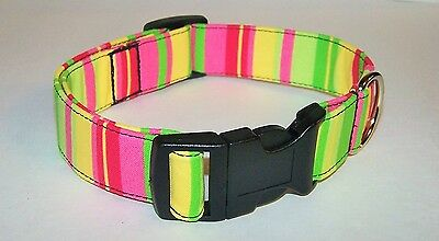 Wet Nose Designs Fun Bright Tropical Stripes Dog Collar Yellow Pink Lime Green
