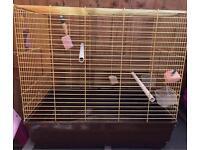 Budgie cockateil bird cage