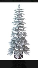 Latch Christmas Tree 6ft snowy