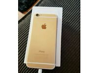 iPhone 16gb gold factory unlocked with apple care aswell.