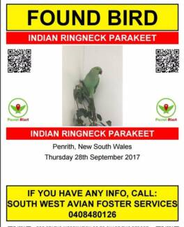 Indian Ring Neck Found