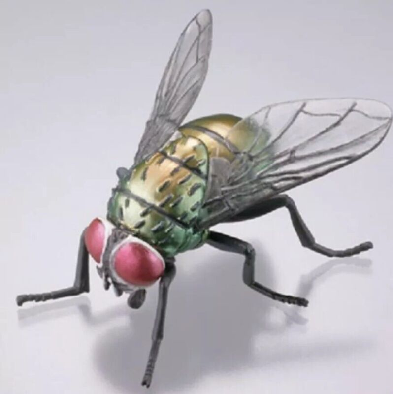 Kaiyodo Museum Q Japan Exclusive Greenbottle Blow Fly Insect Bug Figure Retired