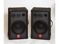 CG Audio Reflex 300 passive speakers (pair)