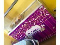 Lucas ice cream freezer with canopy
