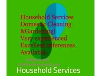 Household Services. Thorough and hard working.