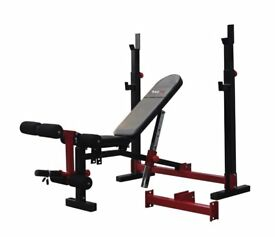 Bodymax CF520 Elite Folding Standard -and Olympic model weight lifting bench