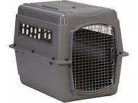 Pet airline cargo crate for sale