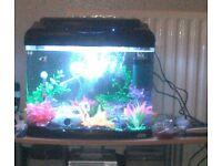 55 litre aquarium