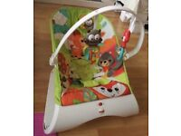 Fisher-Price baby bouncer.