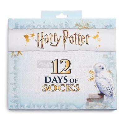 HARRY POTTER 12 Days Of Socks ADVENT Calendar Women's Shoe 4-10 New Hedwig Owl