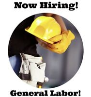 HIRING General Labours