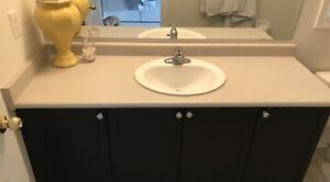 Bathroom Laminate Countertop with Sink/Faucet