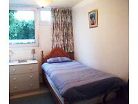 Lovely Single Room in Upper Norwood, SE19
