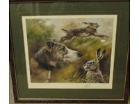 framed picture of a greyhound/lurcher and hares