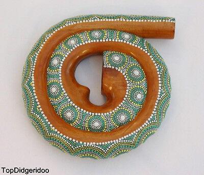 SPIRAL Compact DIDGERIDOO+BAG Handmade Swirl Painted Mahogany Wood SNAIL SHELL
