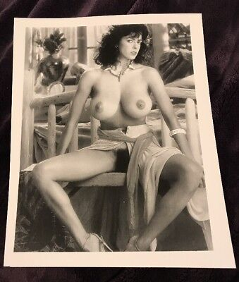 ROBERTA VASQUEZ SEXY VINTAGE 8 X 10 PHOTOGRAPH FROM IRVING KLAWS ARCHIVES