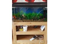 Tropical fish tank with all accessories and fish