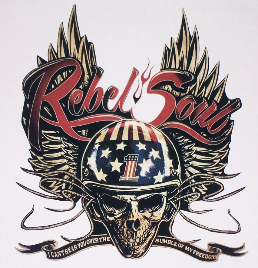 "LARGE 23""X19"" Kid Rock Rebel Soul Decal Sticker Graphics Decals Stickers Harley"
