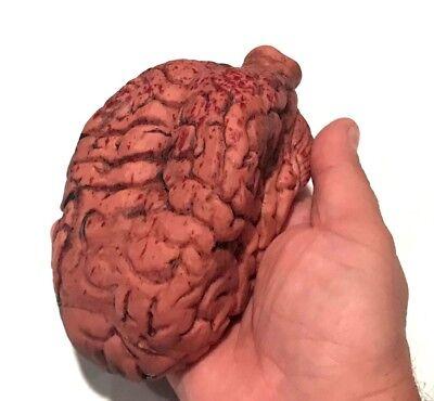 Fake Organs (DELUXE FAKE BRAIN MODEL Hard Rubber Blood 6