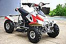brand new quad for kids only $599 WITH REVERSE !!!