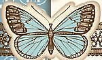 butterfly_buttons_17