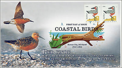 SC 4991, 2015, Coastal Birds, Red Knot, FDC, DCP, 15-166