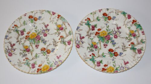 BOOTHS China PLATES