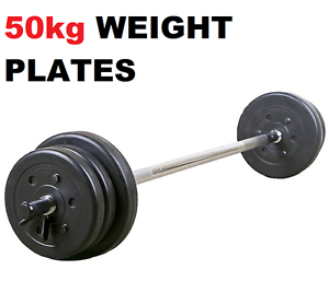 50KG PVC WEIGHT PLATE PACKAGE Wangara Wanneroo Area Preview