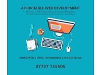 Professional Website Developer   Experienced in Wordpress   eCommerce   HTML