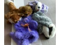 Five different animal hand puppets made of furry material. Includes badger, beaver, dog, fox, cat.