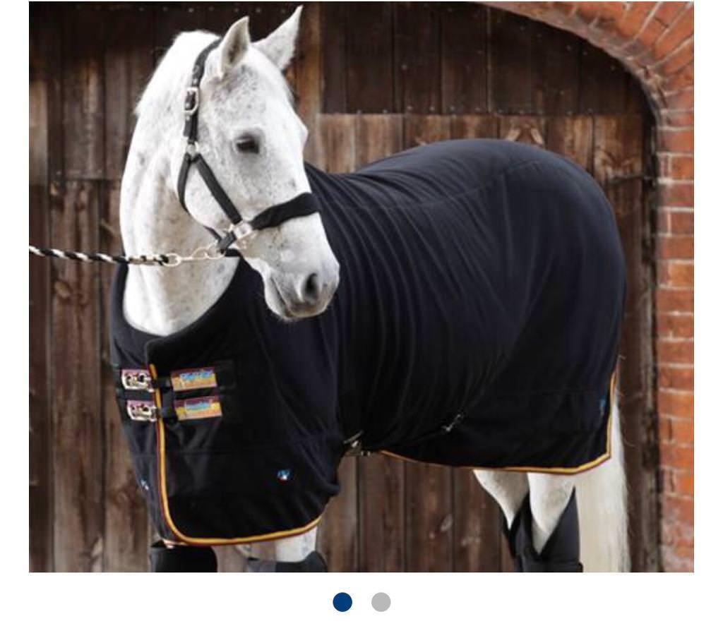 Horse Travel Rug