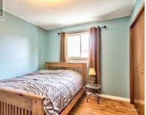 1 Bedroom for rent (short term)