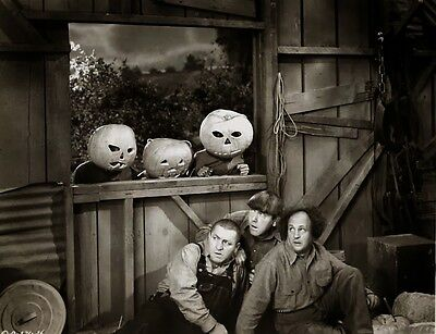 HALLOWEEN PUMPKINS HAUNT THE THREE STOOGES CLASSIC MOVIE SHORTS PIC 8 X 10 - Three Stooges Halloween