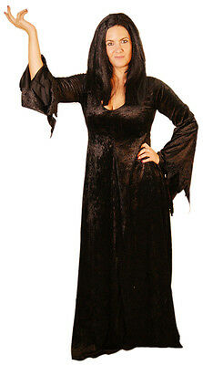 HALLOWEEN-Scary-Creepy-Witch-The Addams Family MORTICIA Costume All Sizes