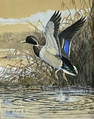 Original Mallard Duck Art Painting by George Sutton, Signed, Framed