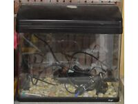 Fish tank aquarium 28 litres full set up all you need included