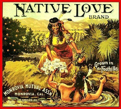 Monrovia Ca  Native Love Orange Citrus Fruit Crate Label Vintage Art Print