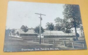 1908 East Palestine Ohio Greenhouse Views Real Photo Postcard
