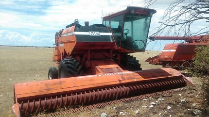 MASSEY FERGUSON HEADERS 3342 Tailem Bend The Coorong Area Preview