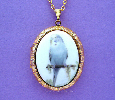 Beautiful Porcelain BLUE PARAKEET CAMEO Costume Jewelry Locket Pendant Necklace](Parakeet Costume)