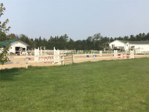 Cache Creek Stables