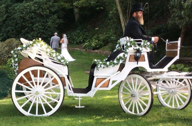 Vis-a-Vis, horse drawn carriage