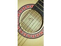 Eleca guitar