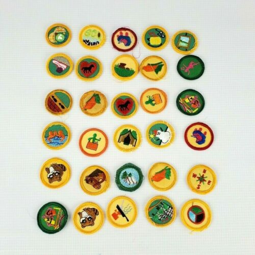 Vintage Mixed LOT Of 30 Retired Girl Scout Patches Merit Badge