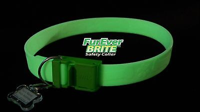 FurEver Brite Glow in the Dark Pet Safety Collar - Medium to Large **ON SALE**