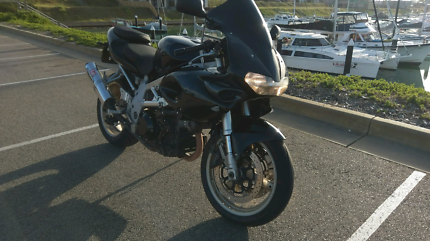 Suzuki TL 1000 S Motorcycle V-Twin